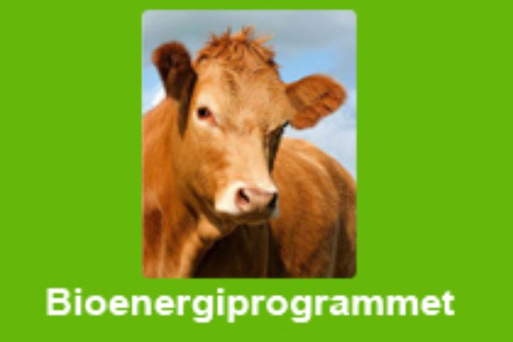 Solvarme og bioenergi er en god kombinasjon!